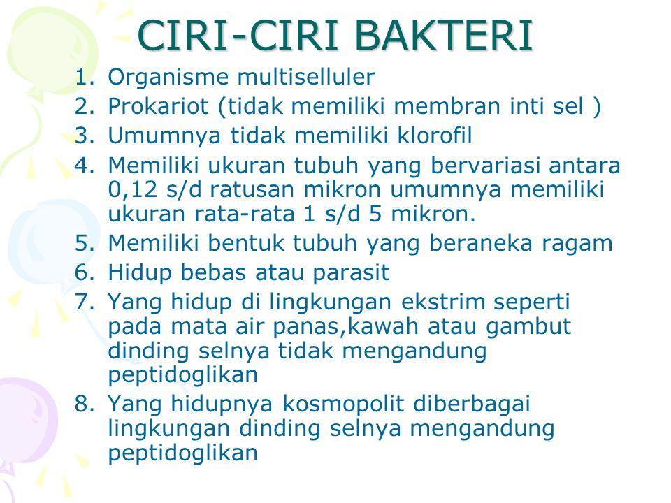CIRI-CIRI BAKTERI 1.Organisme multiselluler 2.Prokariot (tidak memiliki membran inti sel ) 3.Umumnya tidak memiliki klorofil 4.Memiliki ukuran tubuh y