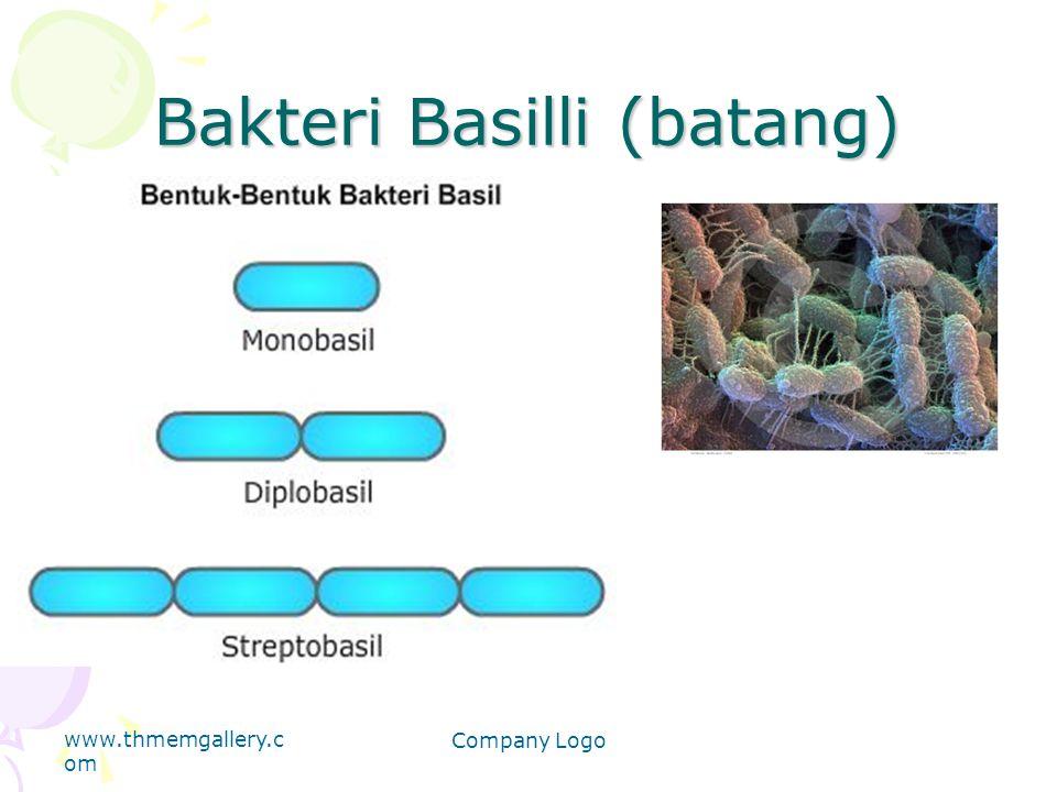 Bakteri Basilli (batang) www.thmemgallery.c om Company Logo