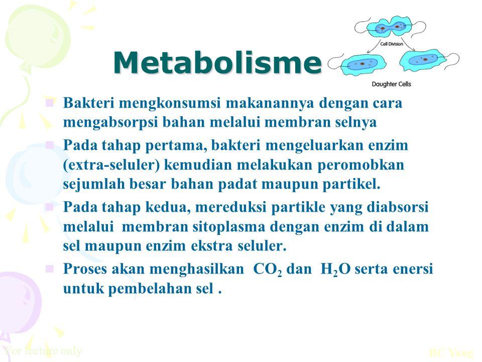 Metabolisme Bakteri mengkonsumsi makanannya dengan cara mengabsorpsi bahan melalui membran selnya Pada tahap pertama, bakteri mengeluarkan enzim (extr