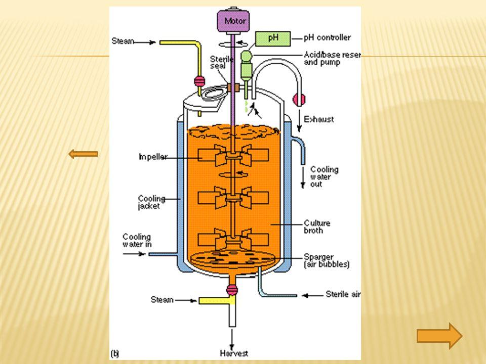  Impeller Fungsi :  memperkecil ukuran gelembung udara sehingga area interface untuk transfer oksigen menjadi besar dan menurunkan jarak difusi.