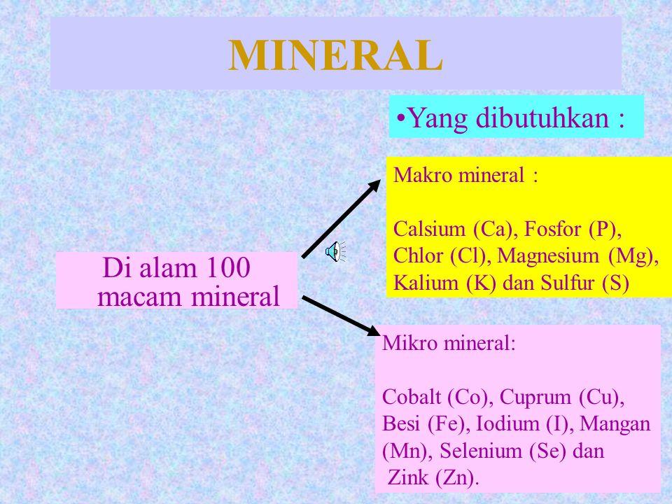 MINERAL Di alam 100 macam mineral Yang dibutuhkan : Makro mineral : Calsium (Ca), Fosfor (P), Chlor (Cl), Magnesium (Mg), Kalium (K) dan Sulfur (S) Mi