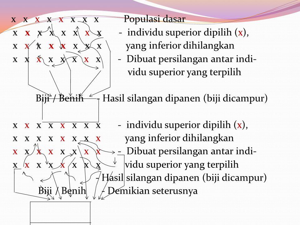 x x x x x x x x Populasi dasar x x x x x x x x - individu superior dipilih (x), x x x x x x x x yang inferior dihilangkan x x x x x x x x - Dibuat per