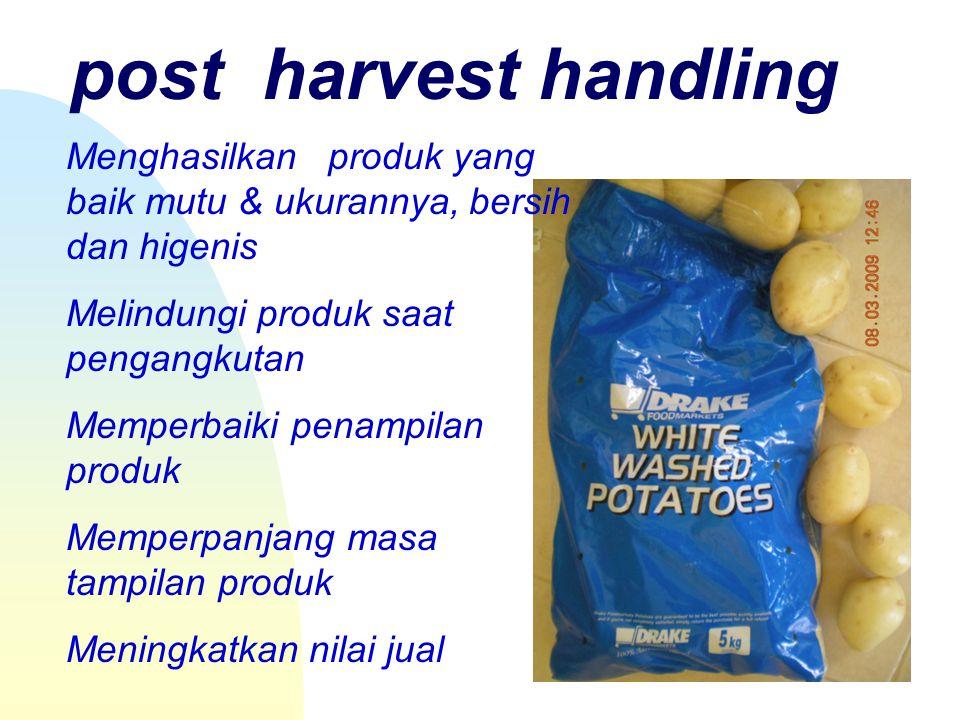 post harvest handling Menghasilkan produk yang baik mutu & ukurannya, bersih dan higenis Melindungi produk saat pengangkutan Memperbaiki penampilan produk Memperpanjang masa tampilan produk Meningkatkan nilai jual