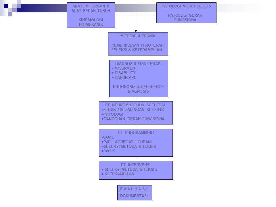 ANATOMI ORGAN & ALAT BERAK TUBUH KINESIOLOGI BIOMEKANIK PATOLOGI MORPHOLOGIS PATOLOGI GERAK - FUNGSIONAL METODE & TEKNIK PEMERIKSAAN FISIOTERAPI SELEK