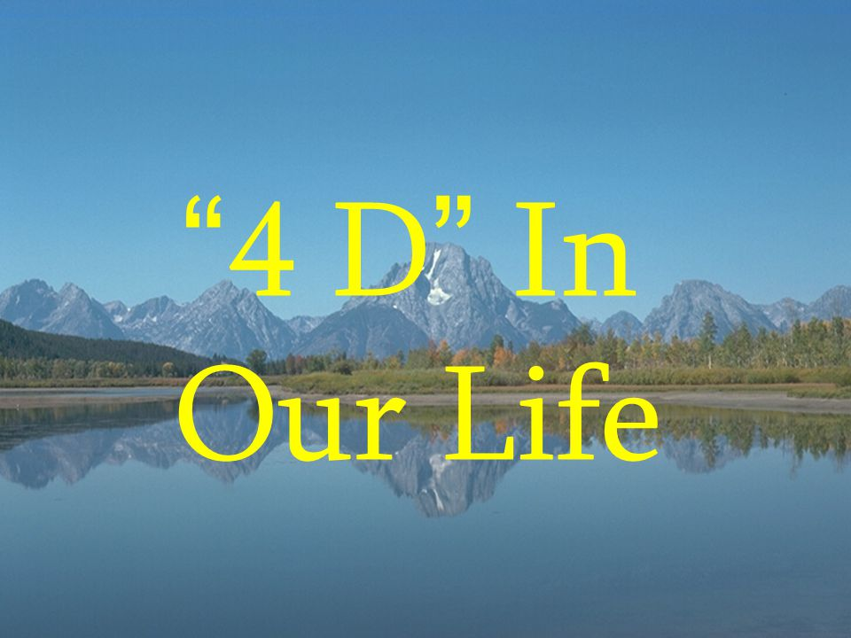 """"""" 4 D """" In Our Life"""