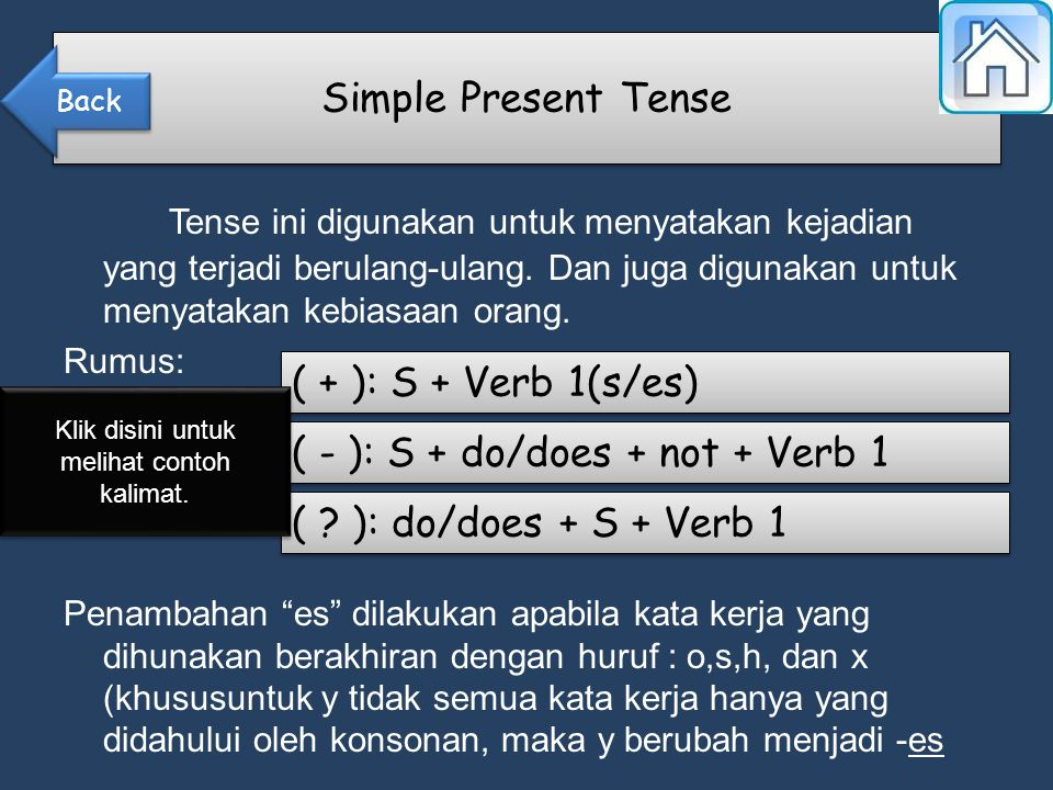 ( + ): S + Verb 1(s/es) ( - ): S + do/does + not + Verb 1 ( .
