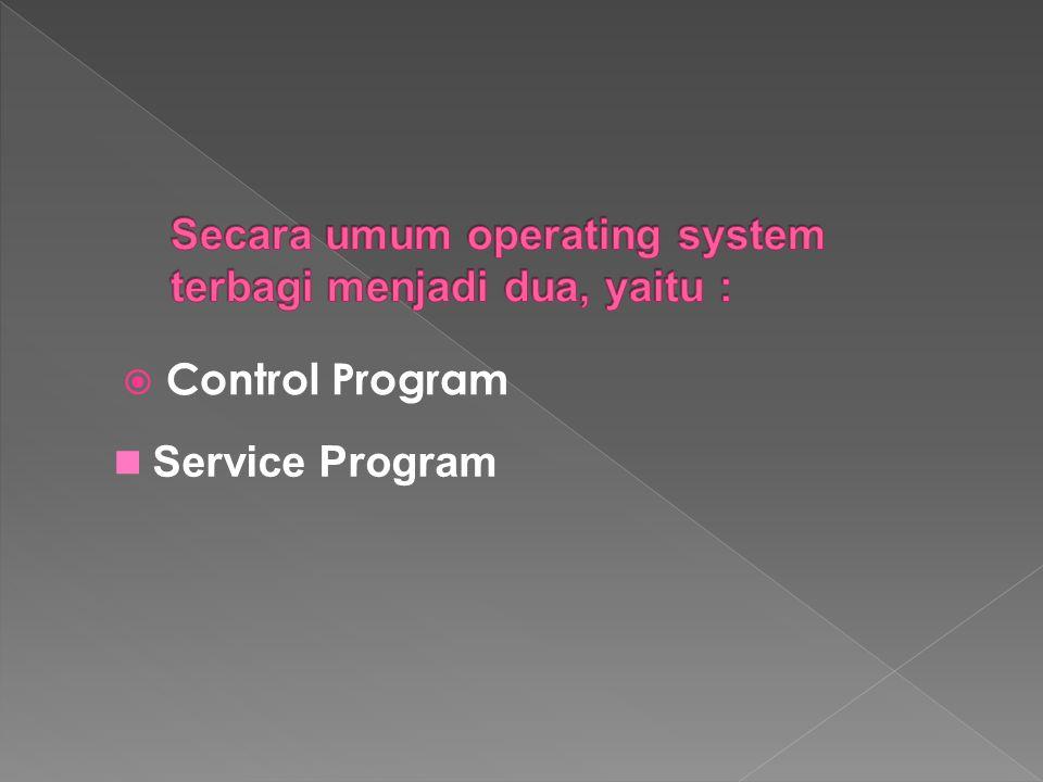  Control Program Service Program