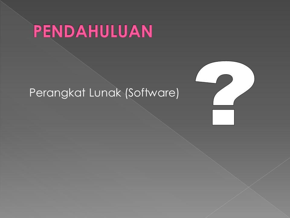 Perangkat Lunak (Software)