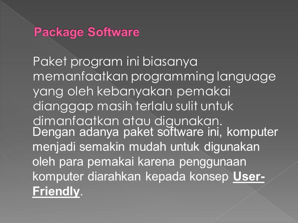 Paket program ini biasanya memanfaatkan programming language yang oleh kebanyakan pemakai dianggap masih terlalu sulit untuk dimanfaatkan atau digunak
