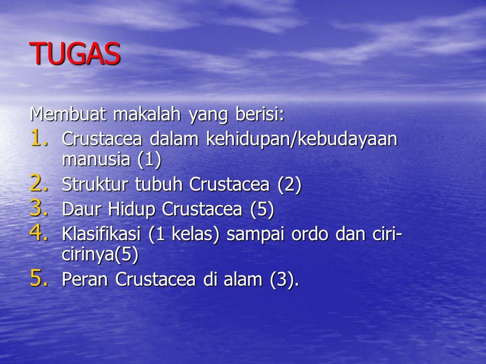 TUGAS Membuat makalah yang berisi: 1. Crustacea dalam kehidupan/kebudayaan manusia (1) 2. Struktur tubuh Crustacea (2) 3. Daur Hidup Crustacea (5) 4.