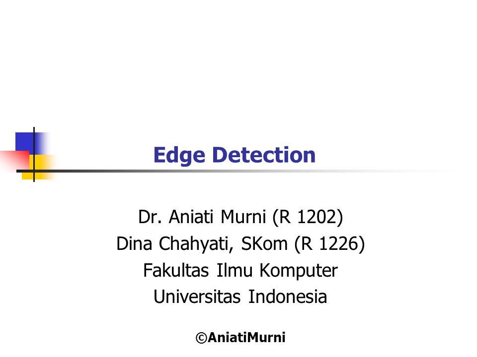 12 Contoh Kernel Edge Detector (2) Baxter: directional edge detection Utara U-T Timur S-T 1 1 1 1 1 1 -1 1 1 -1 -1 1 1 -2 1 -1 -2 1 -1 -2 1 -1 -2 1 -1 -1 -1 -1 -1 1 -1 1 1 1 1 1 Selatan S-B Barat U-B -1 -1 -1 1 -1 -1 1 1 -1 1 1 1 1 -2 1 1 -2 -1 1 -2 -1 1 -2 -1 1 1 1 1 1 1 1 1 -1 1 -1 -1