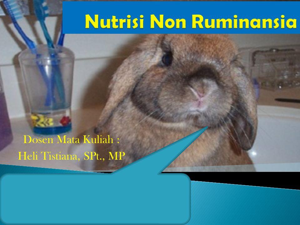 Kebutuhan Zat Nutrisi Pada Ternak Kelinci Dosen Mata Kuliah : Heli Tistiana, SPt., MP