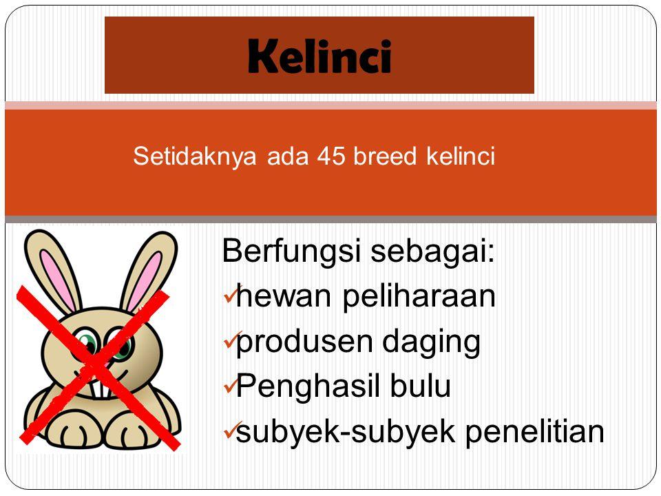 Berfungsi sebagai: hewan peliharaan produsen daging Penghasil bulu subyek-subyek penelitian Kelinci Setidaknya ada 45 breed kelinci