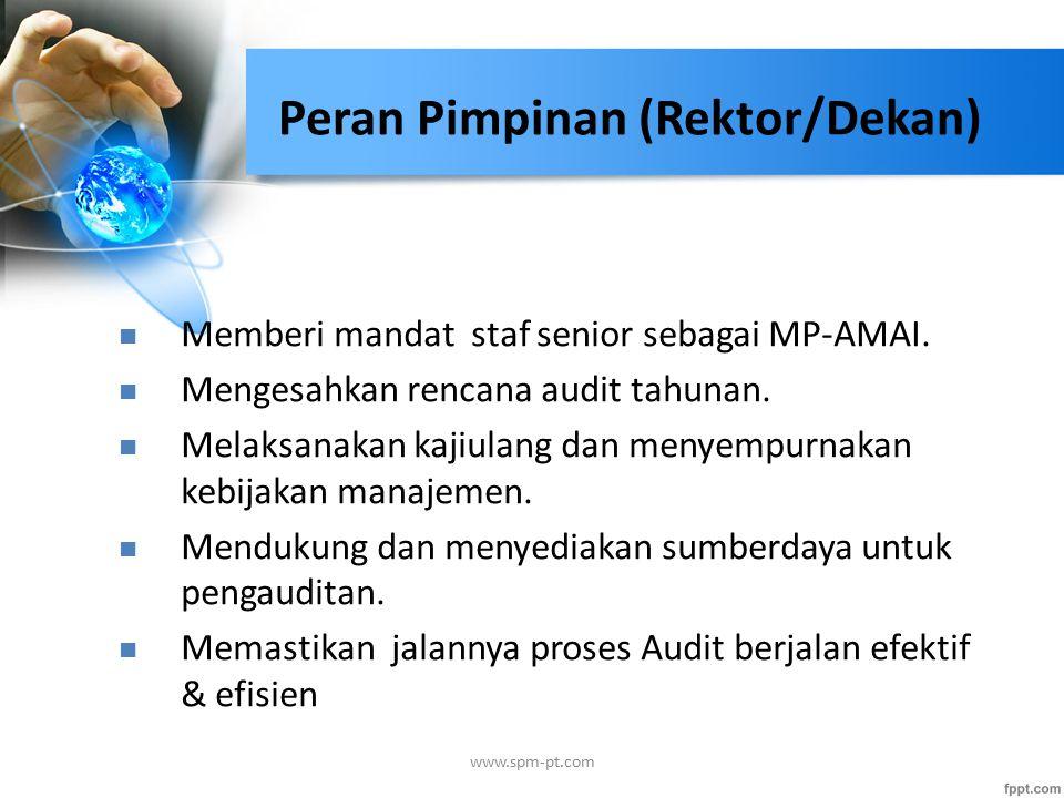 Memberi mandat staf senior sebagai MP-AMAI. Mengesahkan rencana audit tahunan.