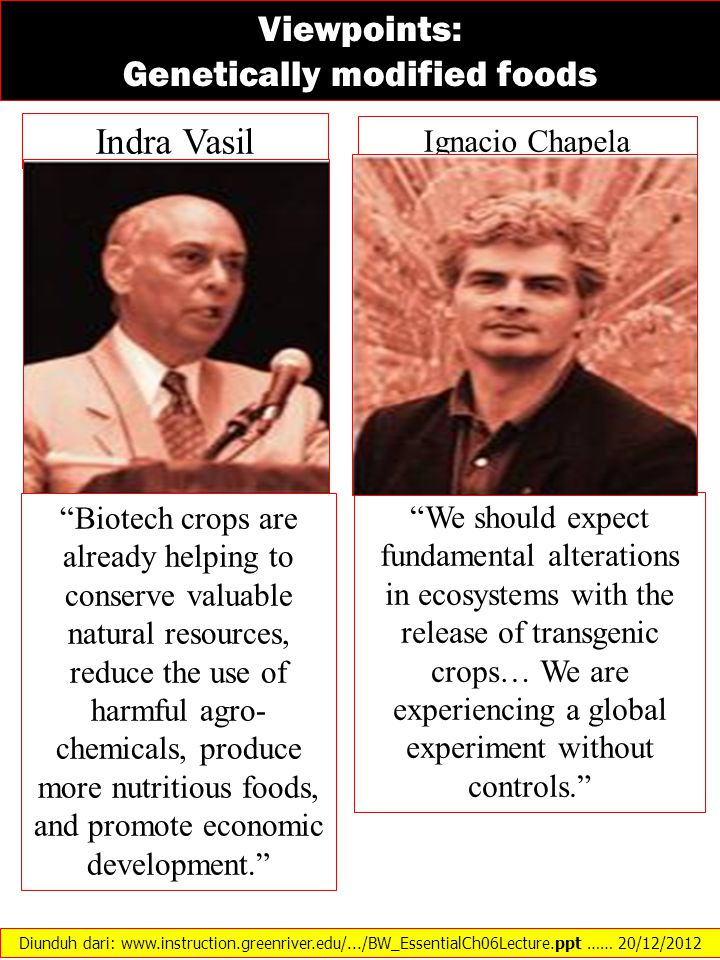 Viewpoints: Genetically modified foods Indra Vasil Ignacio Chapela We should expect fundamental alterations in ecosystems with the release of transgenic crops… We are experiencing a global experiment without controls. Biotech crops are already helping to conserve valuable natural resources, reduce the use of harmful agro- chemicals, produce more nutritious foods, and promote economic development. Diunduh dari: www.instruction.greenriver.edu/.../BW_EssentialCh06Lecture.ppt …… 20/12/2012