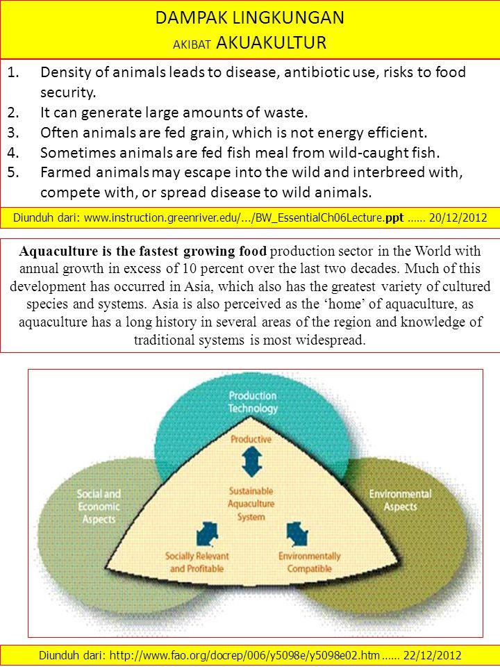 DAMPAK LINGKUNGAN AKIBAT AKUAKULTUR 1.Density of animals leads to disease, antibiotic use, risks to food security.