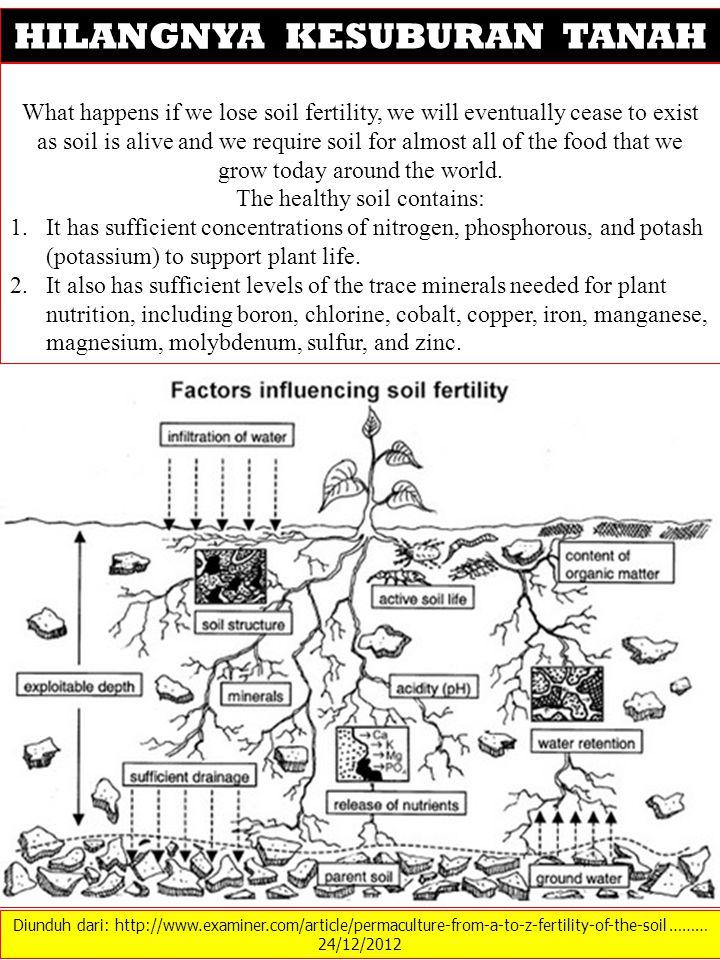 Diunduh dari: http://www.examiner.com/article/permaculture-from-a-to-z-fertility-of-the-soil ……… 24/12/2012 HILANGNYA KESUBURAN TANAH What happens if
