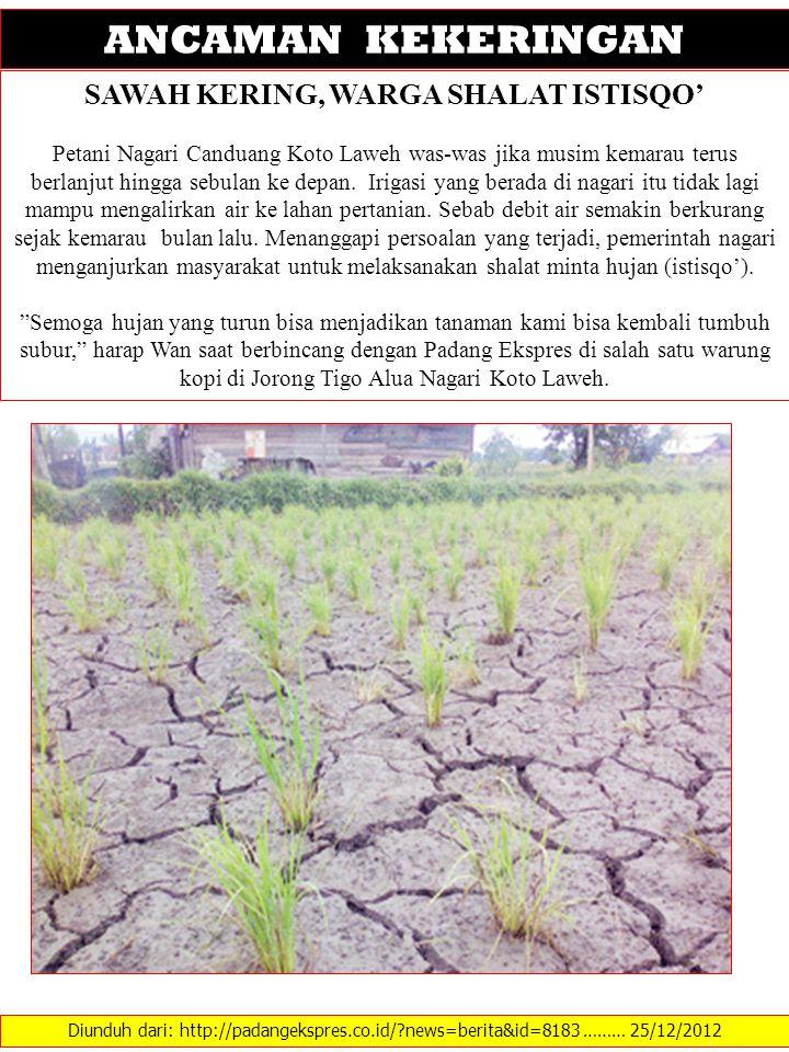 Diunduh dari: http://padangekspres.co.id/?news=berita&id=8183 ……… 25/12/2012 ANCAMAN KEKERINGAN SAWAH KERING, WARGA SHALAT ISTISQO' Petani Nagari Cand