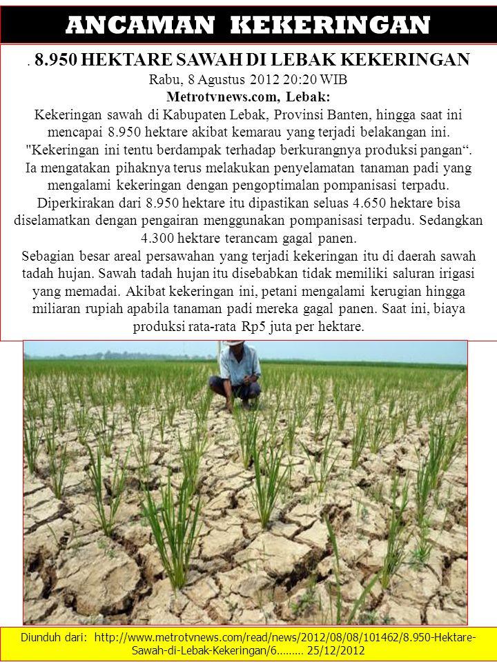 Diunduh dari: http://www.metrotvnews.com/read/news/2012/08/08/101462/8.950-Hektare- Sawah-di-Lebak-Kekeringan/6……… 25/12/2012 ANCAMAN KEKERINGAN. 8.95