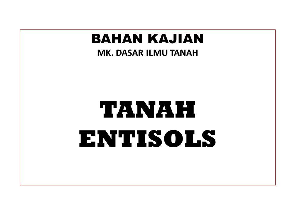 TANAH ENTISOLS KLASIFIKASI TANAH Ada lima subordo dalam ordo Entisols: 1.Aquents: Entisols yang basah (jenuh air) secara permanen atau musiman dipetakan sebagai Aquents.