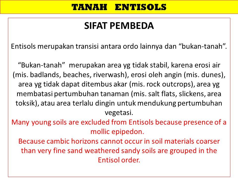 """TANAH ENTISOLS SIFAT PEMBEDA Entisols merupakan transisi antara ordo lainnya dan """"bukan-tanah"""". """"Bukan-tanah"""" merupakan area yg tidak stabil, karena e"""