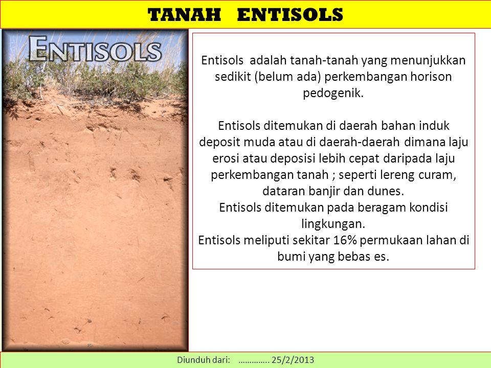 TANAH ENTISOLS Entisols adalah tanah-tanah yang menunjukkan sedikit (belum ada) perkembangan horison pedogenik. Entisols ditemukan di daerah bahan ind