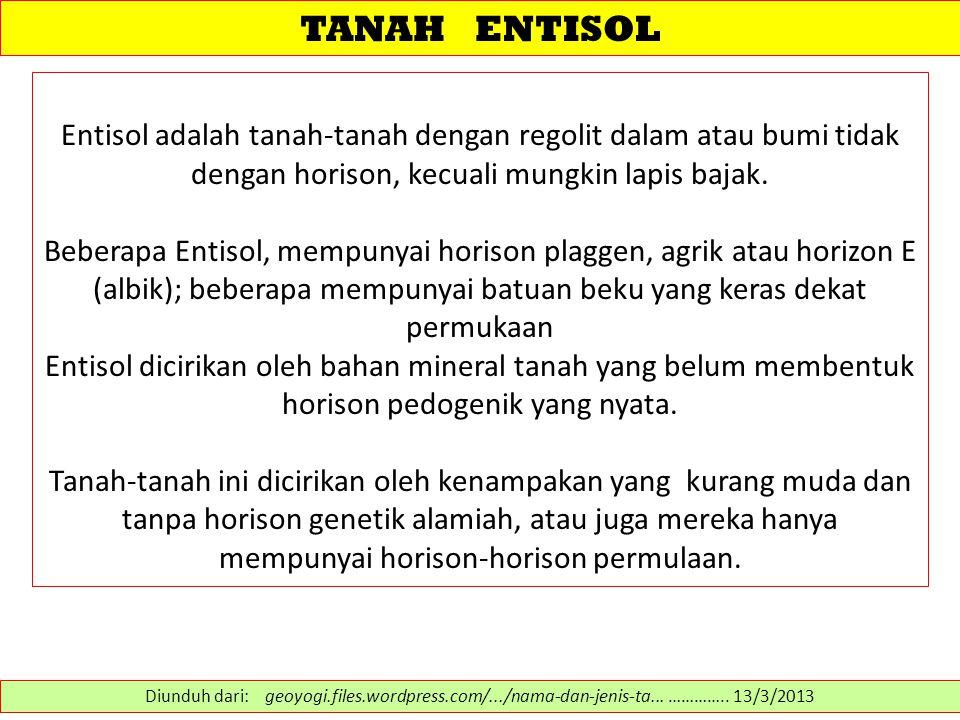 TANAH ENTISOL Entisol adalah tanah-tanah dengan regolit dalam atau bumi tidak dengan horison, kecuali mungkin lapis bajak. Beberapa Entisol, mempunyai