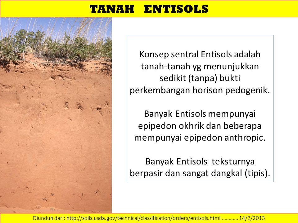 TANAH ENTISOLS Diunduh dari: http://soils.usda.gov/technical/classification/orders/entisols.html ………… 14/2/2013 Konsep sentral Entisols adalah tanah-t