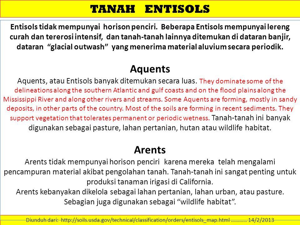 TANAH ENTISOLS Diunduh dari: http://soils.usda.gov/technical/classification/orders/entisols_map.html ………… 14/2/2013 Entisols tidak mempunyai horison p