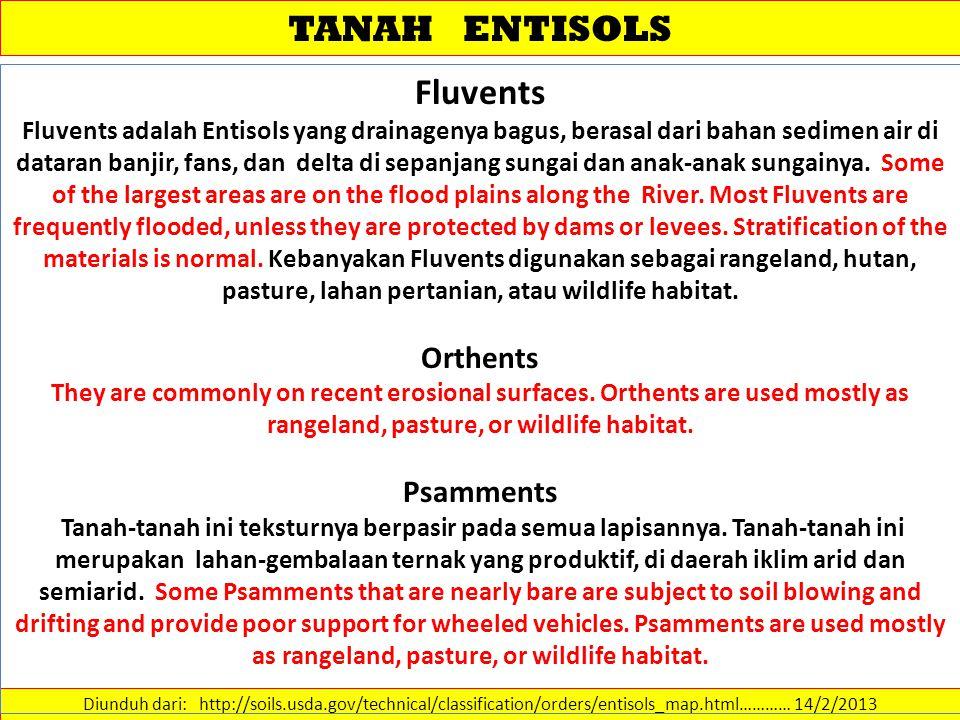 TANAH ENTISOLS Diunduh dari: http://soils.usda.gov/technical/classification/orders/entisols_map.html………… 14/2/2013 Fluvents Fluvents adalah Entisols y