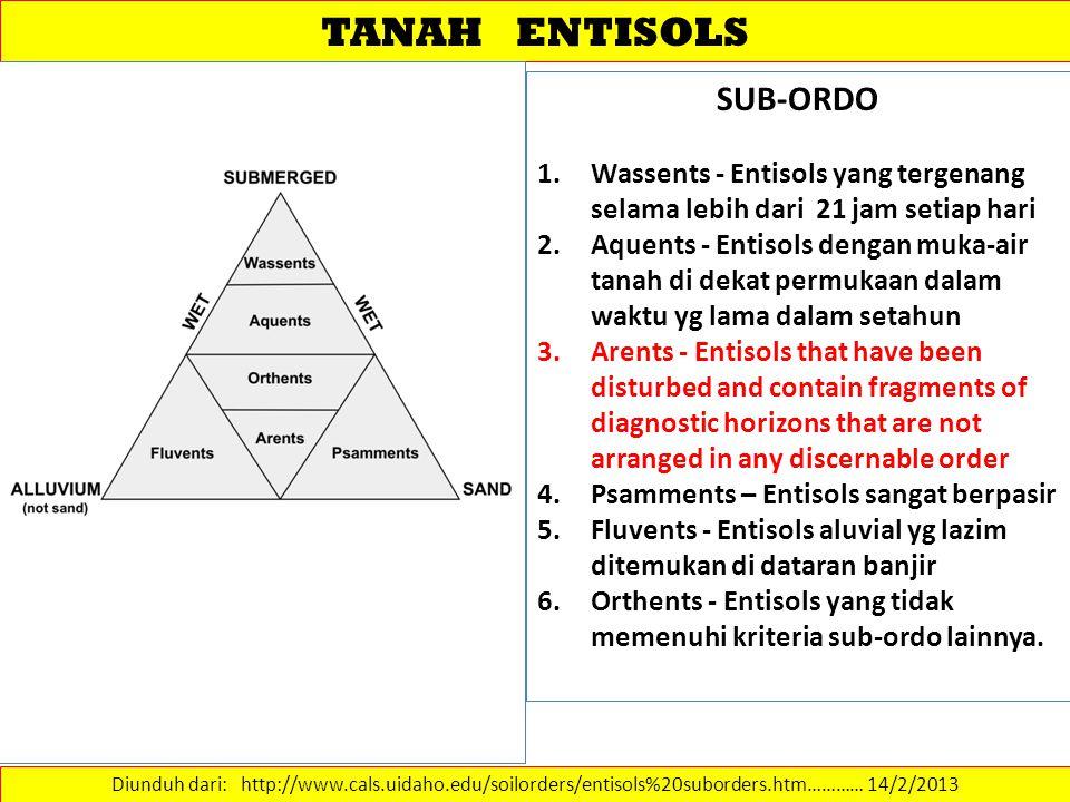 TANAH ENTISOLS Diunduh dari: http://www.cals.uidaho.edu/soilorders/entisols%20suborders.htm………… 14/2/2013 SUB-ORDO 1.Wassents - Entisols yang tergenan
