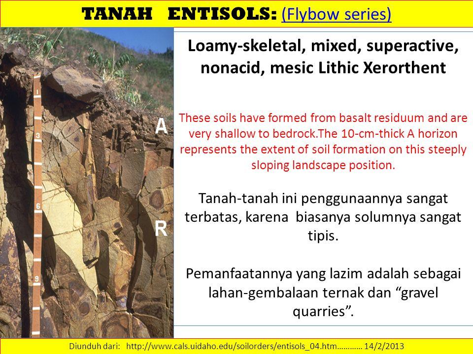 TANAH ENTISOLS: (Flybow series) (Flybow series) Diunduh dari: http://www.cals.uidaho.edu/soilorders/entisols_04.htm………… 14/2/2013 Loamy-skeletal, mixe