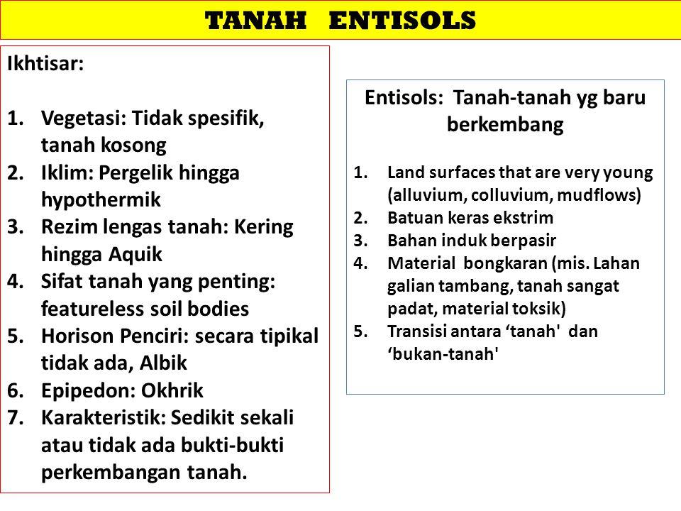 TANAH ENTISOLS Ikhtisar: 1.Vegetasi: Tidak spesifik, tanah kosong 2.Iklim: Pergelik hingga hypothermik 3.Rezim lengas tanah: Kering hingga Aquik 4.Sif