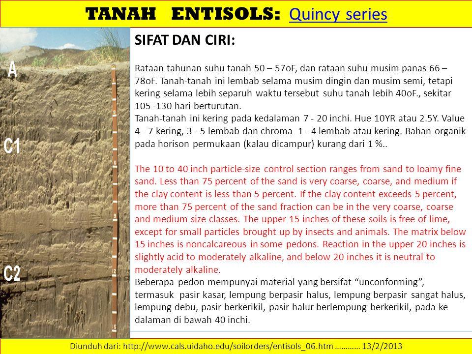 TANAH ENTISOLS: Quincy series Quincy series Diunduh dari: http://www.cals.uidaho.edu/soilorders/entisols_06.htm ………… 13/2/2013 SIFAT DAN CIRI: Rataan