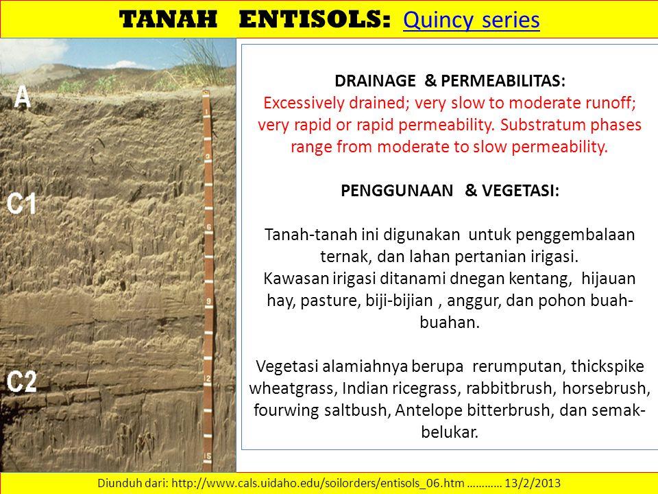 TANAH ENTISOLS: Quincy series Quincy series Diunduh dari: http://www.cals.uidaho.edu/soilorders/entisols_06.htm ………… 13/2/2013 DRAINAGE & PERMEABILITA
