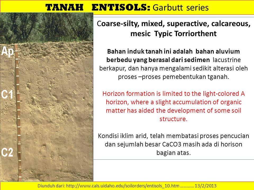 TANAH ENTISOLS: Garbutt series Diunduh dari: http://www.cals.uidaho.edu/soilorders/entisols_10.htm ………… 13/2/2013 Coarse-silty, mixed, superactive, ca