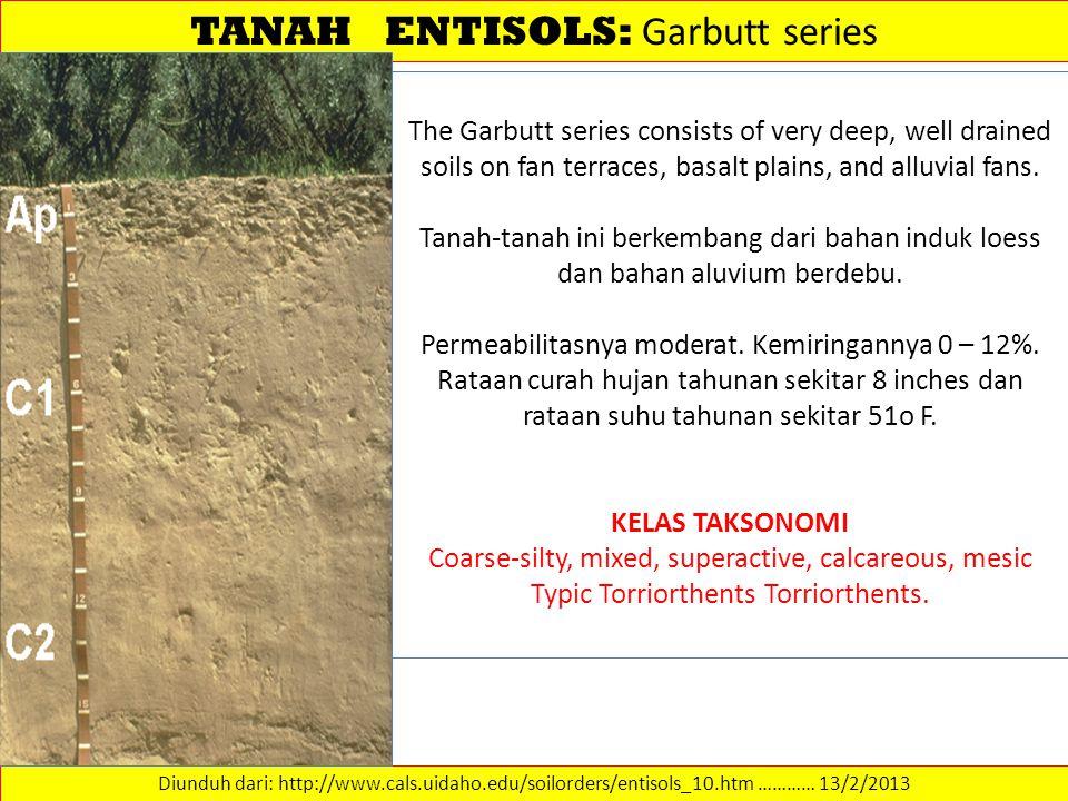 TANAH ENTISOLS: Garbutt series Diunduh dari: http://www.cals.uidaho.edu/soilorders/entisols_10.htm ………… 13/2/2013 The Garbutt series consists of very