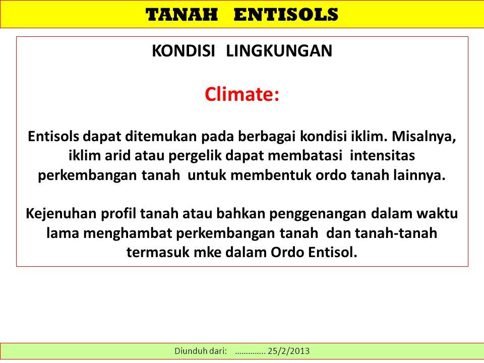 TANAH ENTISOLS KONDISI LINGKUNGAN Climate: Entisols dapat ditemukan pada berbagai kondisi iklim. Misalnya, iklim arid atau pergelik dapat membatasi in