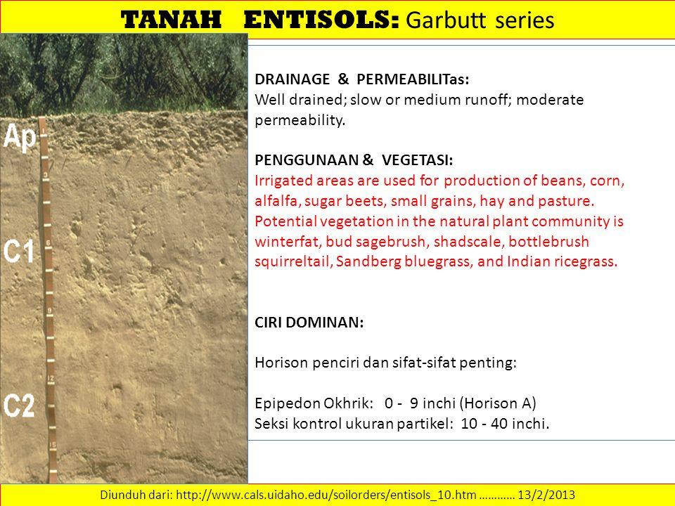 TANAH ENTISOLS: Garbutt series Diunduh dari: http://www.cals.uidaho.edu/soilorders/entisols_10.htm ………… 13/2/2013 DRAINAGE & PERMEABILITas: Well drain