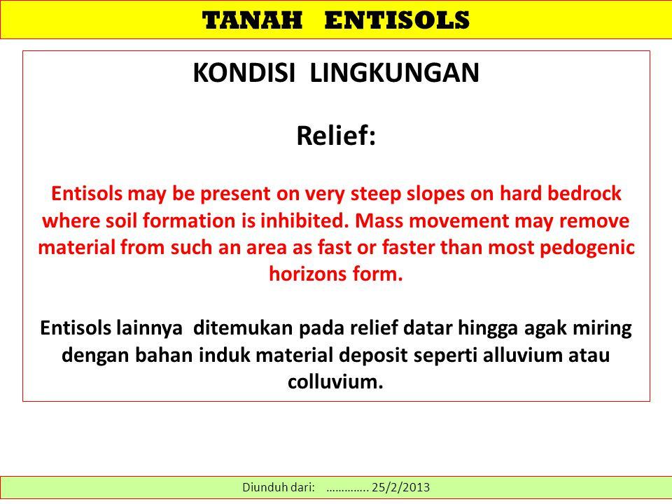 TANAH ENTISOLS SIFAT PEMBEDA Entisols merupakan transisi antara ordo lainnya dan bukan-tanah .