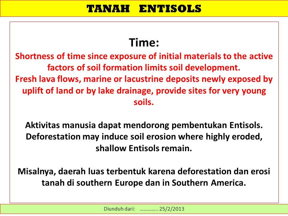TANAH ENTISOLS Entisols: Tanah-tanah ini mempunyai profil A/C atau A/R, hanya menunjukkan sedikit gejala perkembangan tanah – terutama dalam horison permukaannya, mungkin mempunyai horison Ap.