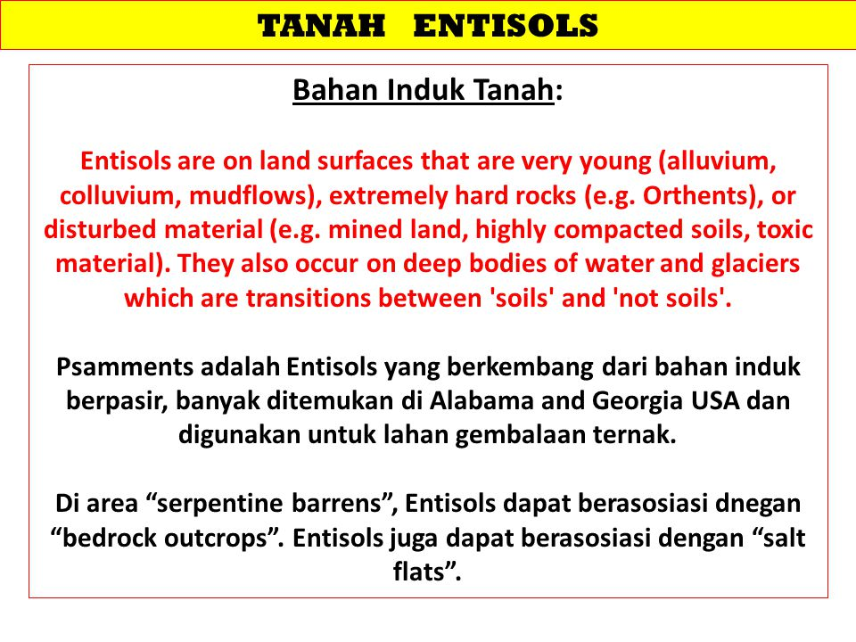TANAH ENTISOLS Bahan Induk Tanah: Entisols are on land surfaces that are very young (alluvium, colluvium, mudflows), extremely hard rocks (e.g. Orthen