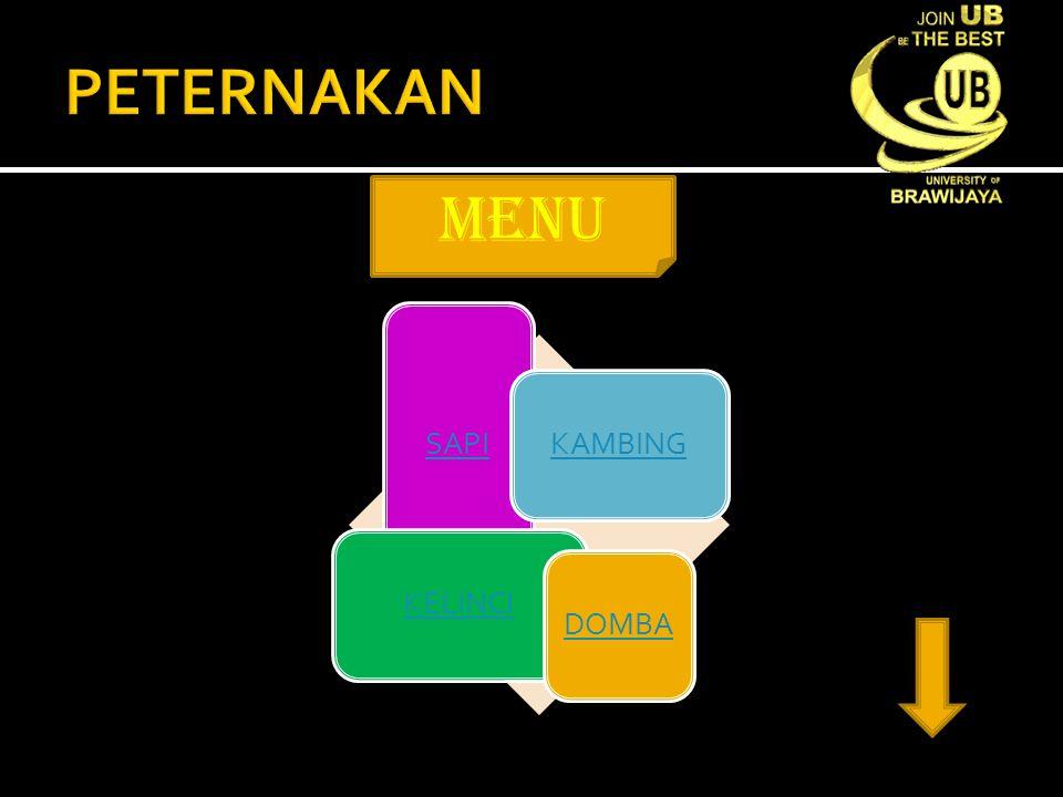menu SAPI KAMBINGKELINCIDOMBA