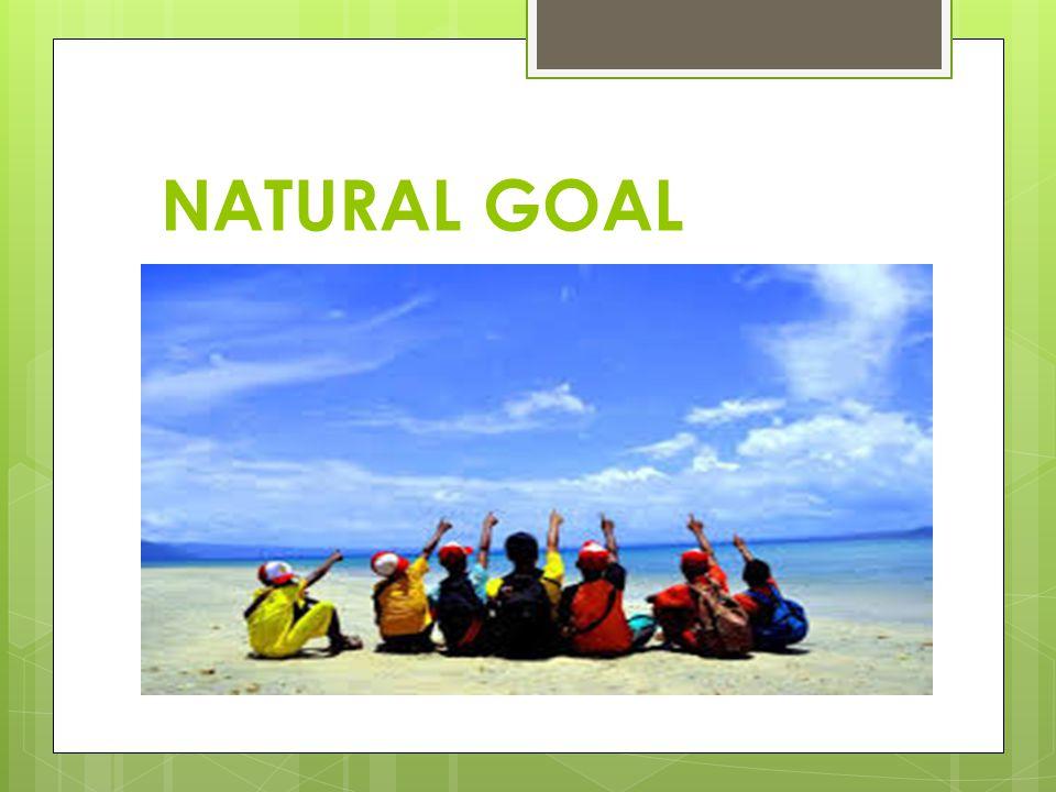 NATURAL GOAL