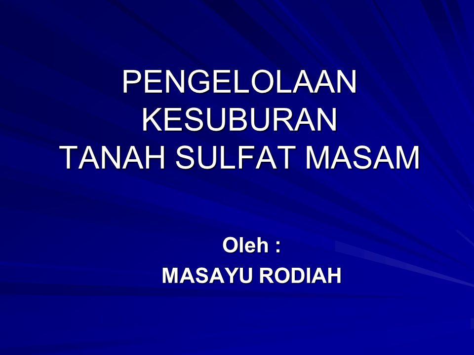PENGELOLAAN KESUBURAN TANAH SULFAT MASAM Oleh : MASAYU RODIAH