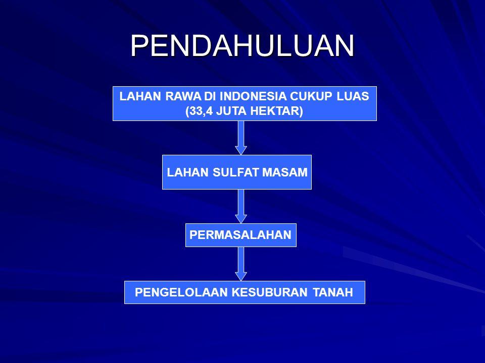 PENDAHULUAN PENGELOLAAN KESUBURAN TANAH LAHAN RAWA DI INDONESIA CUKUP LUAS (33,4 JUTA HEKTAR) LAHAN SULFAT MASAM PERMASALAHAN