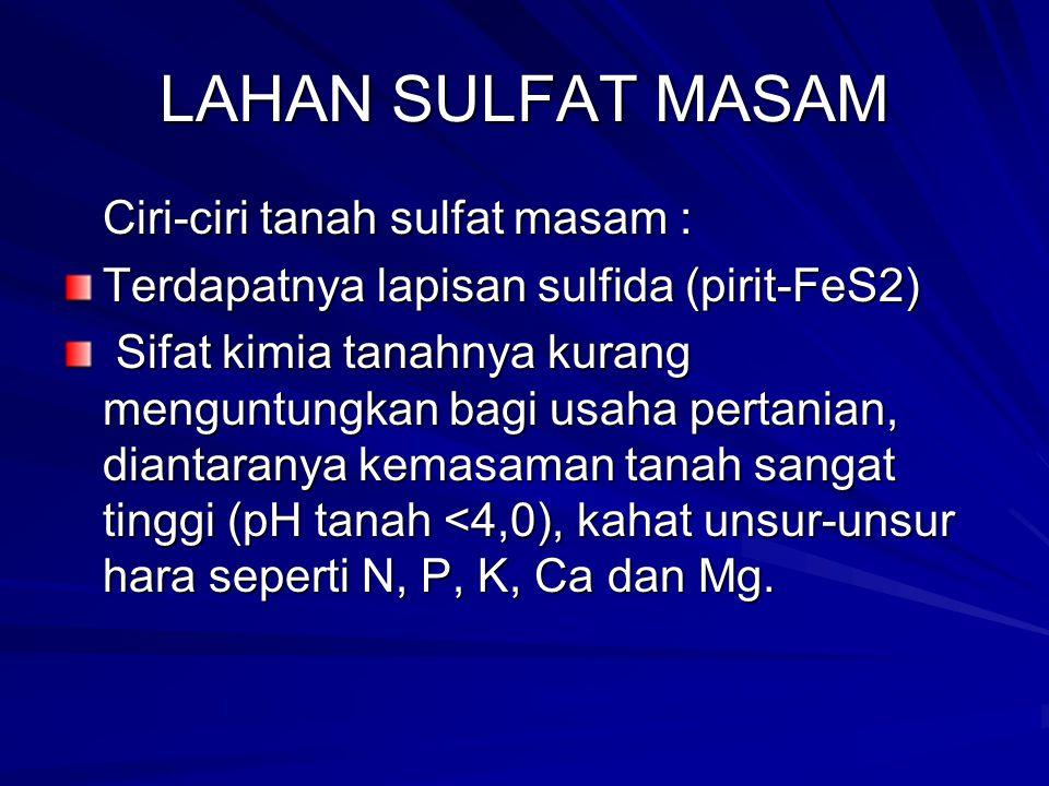 LAHAN SULFAT MASAM Ciri-ciri tanah sulfat masam : Terdapatnya lapisan sulfida (pirit-FeS2) Sifat kimia tanahnya kurang menguntungkan bagi usaha pertan