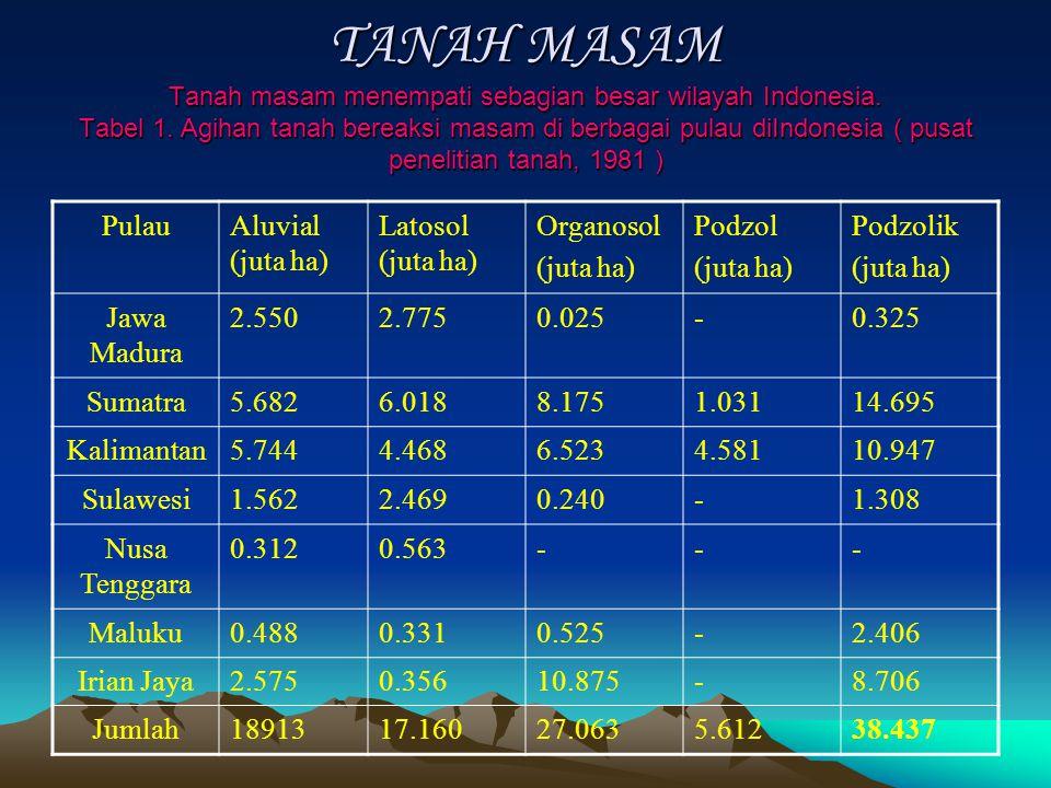 TANAH MASAM Tanah masam menempati sebagian besar wilayah Indonesia. Tabel 1. Agihan tanah bereaksi masam di berbagai pulau diIndonesia ( pusat penelit
