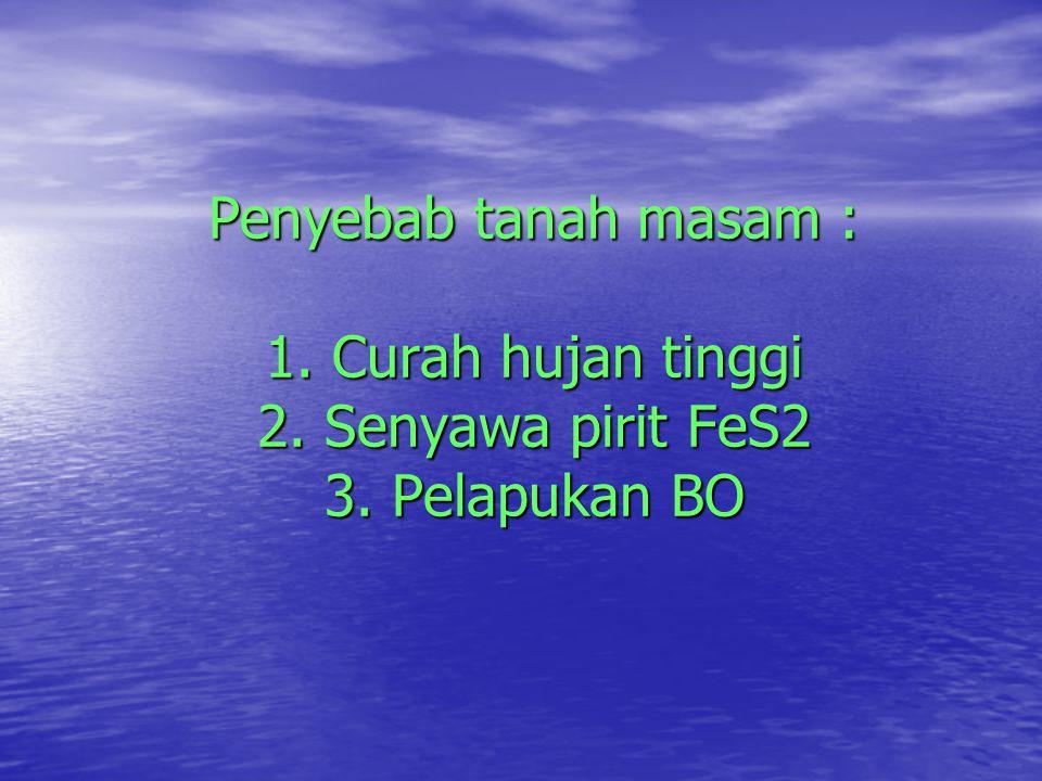 Penyebab tanah masam : 1. Curah hujan tinggi 2. Senyawa pirit FeS2 3. Pelapukan BO