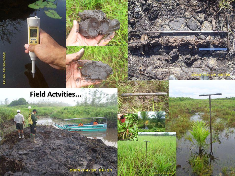 Field Actvities...
